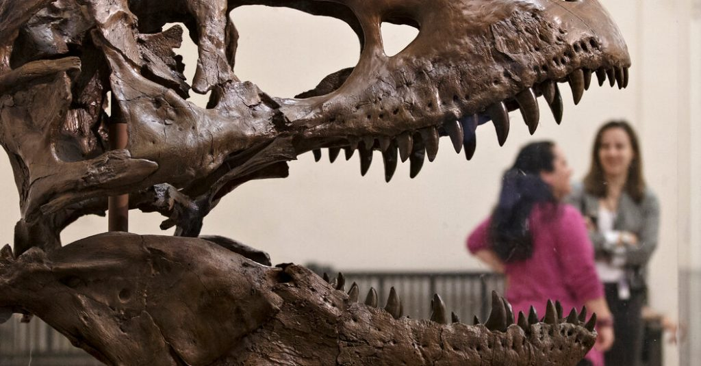Paleontologists See Stars as Software Bleeps Scientific Terms